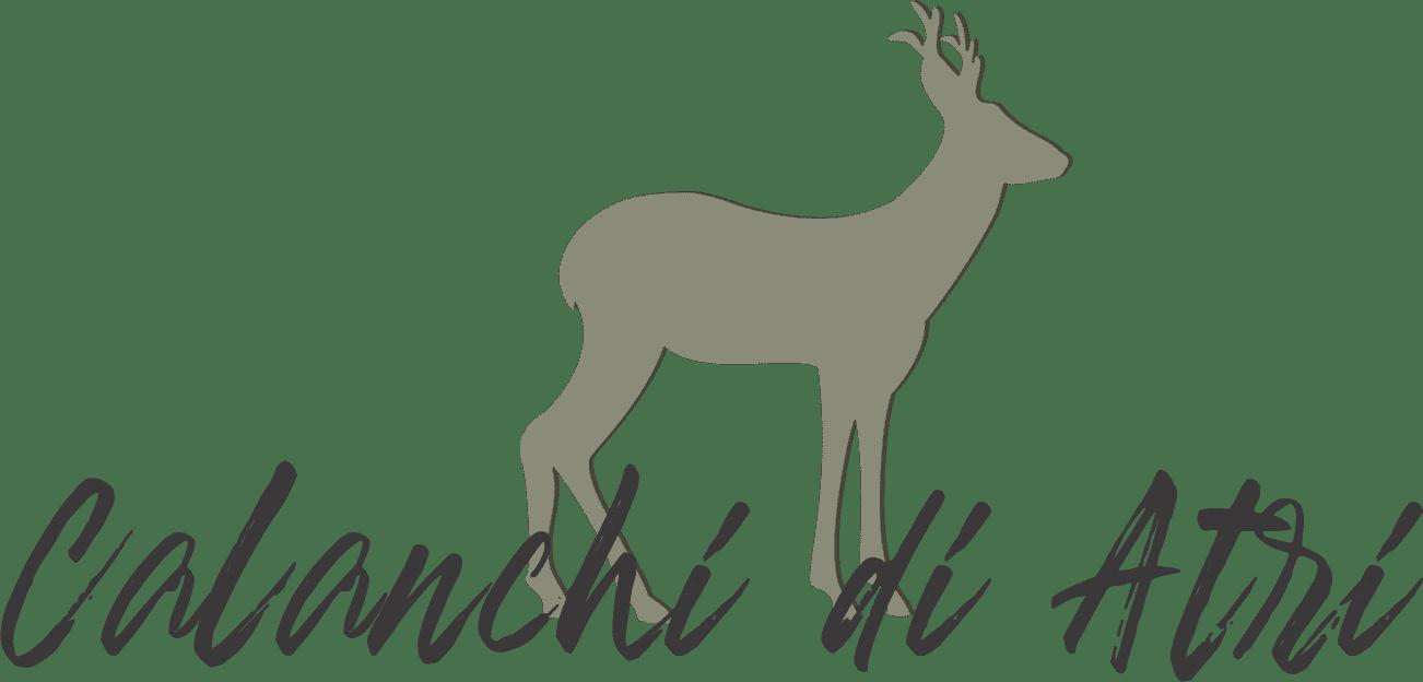 Calanchi Di Atri – Riserva Naturale Regionale Logo