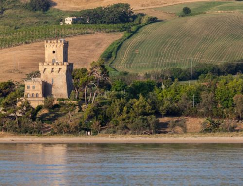 Area Marina Protetta – Torre del Cerrano